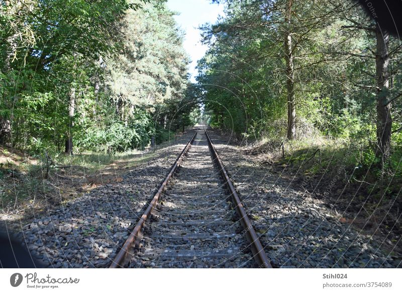 Closed railway line in the Uckermark Track rails Right ahead Forwards Forest dead straight ballast bed gravel railway embankment huts railway tracks overgrown