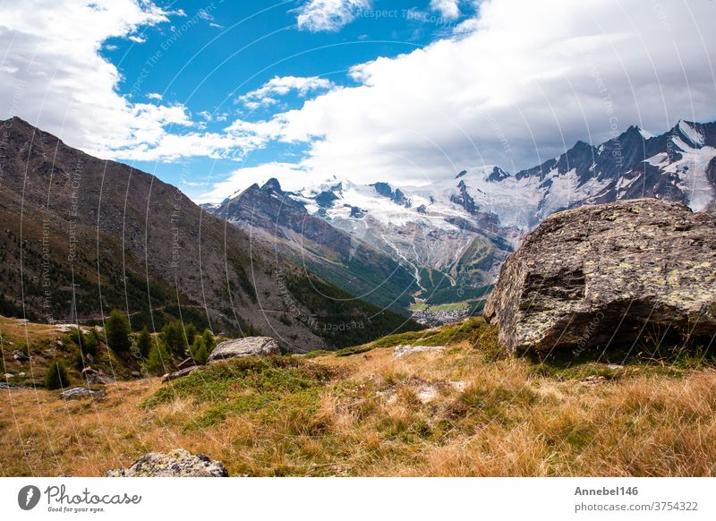 green Mountain landscape in the summer with trees and blue sky in the Alps Switzerland beautiful background on a sunny day switzerland nature alps alpine travel
