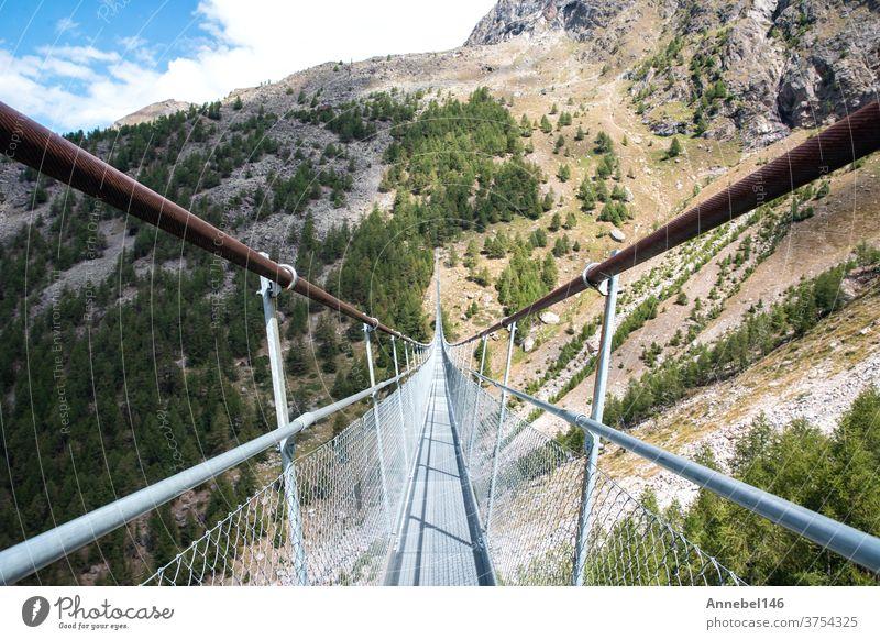 Charles Kuonen suspension bridge in Swiss Alps. With 494 metres, it is the longest suspension bridge in the world in summer landscape nature outdoor view travel