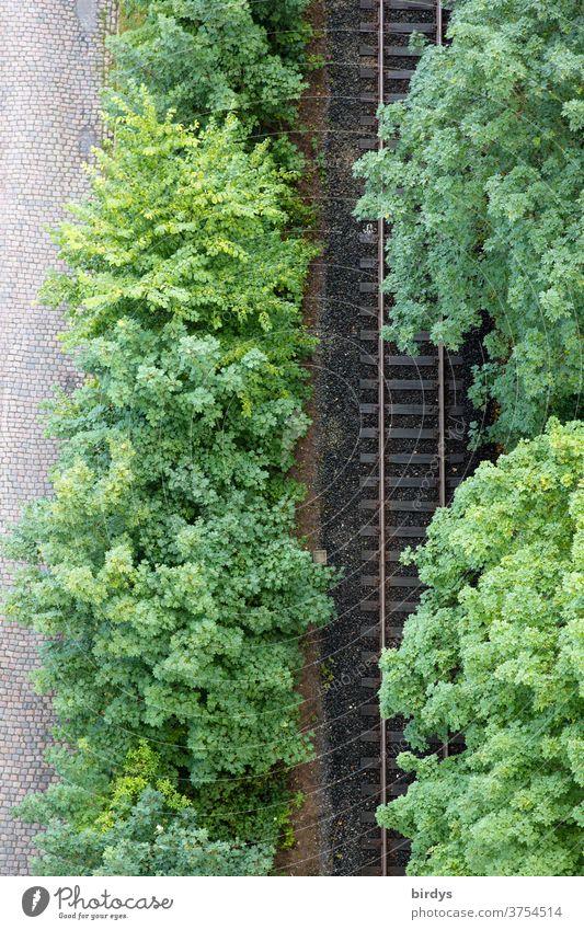 Railway line, lined with leafy trees, tracks, bird's-eye view, rail traffic, railway line Railroad tracks huts Bird's-eye view German Federal Railway rail line