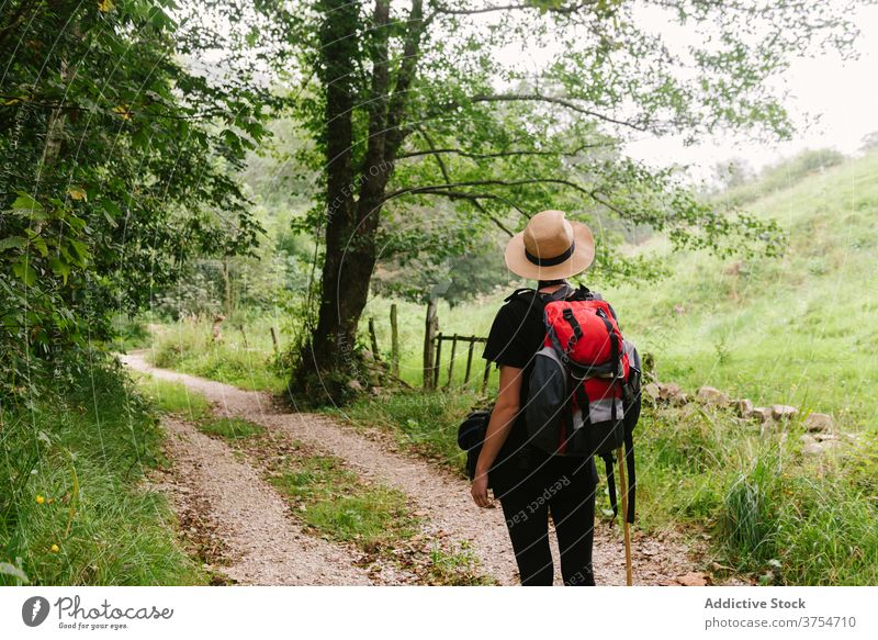 Traveler standing on path in forest tourist backpack trail travel woods nature vacation adventure hat walk journey traveler holiday summer activity trekking