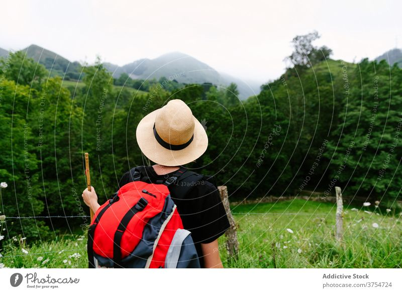 Tourist with backpack in green forest traveler trekking woods summer explorer hike nature adventure vacation wooden stick path tourism trail journey wanderlust