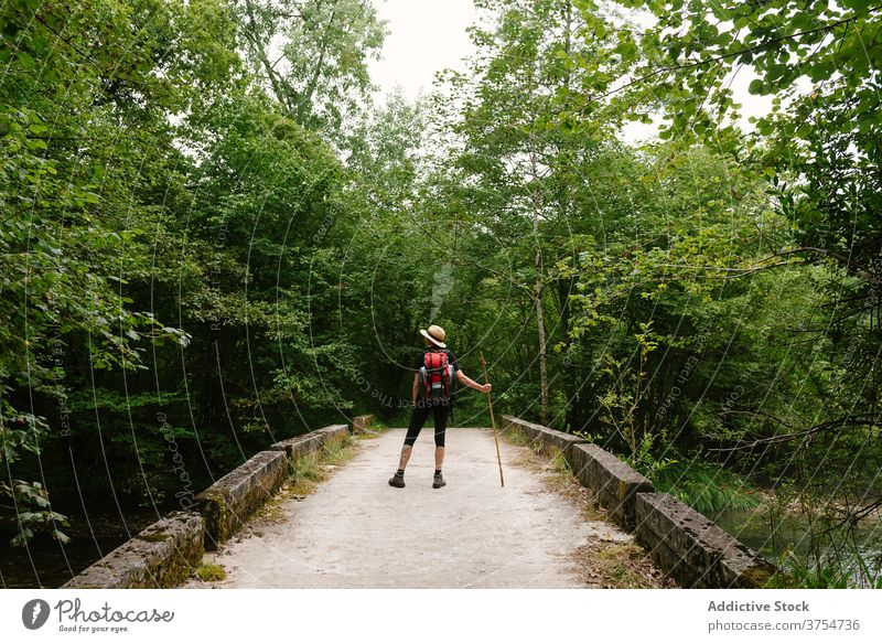 Unrecognizable traveler on stone bridge in woods forest explore vacation summer relax admire nature tourist backpack wooden stick shabby adventure tourism