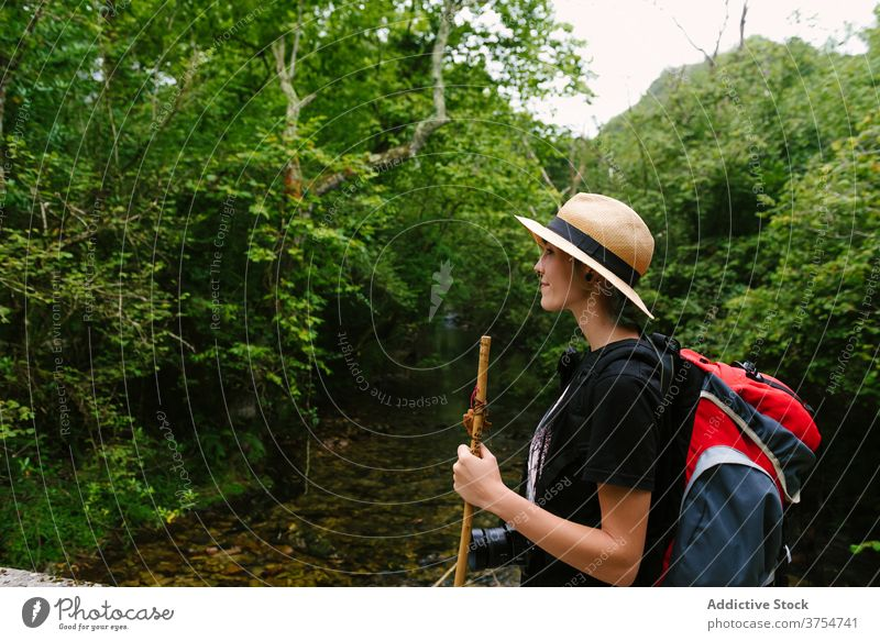 Traveler standing on path in forest tourist backpack trail travel woods nature vacation adventure hat journey traveler walk holiday summer activity trekking