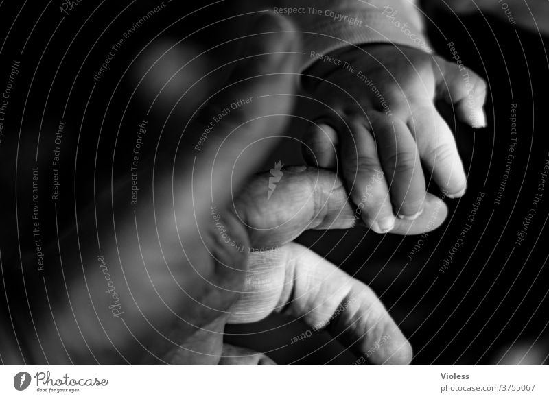Intergenerational contract - reaching out a hand touching Corona Global Handshake Help Belief Affectionate Support senior citizens Touch two persons Generations