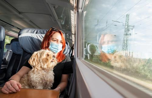 Young woman with face mask and dog traveling by train.Train travel during pandemic Germany Millennial adventure business class carriage caucasian chairs