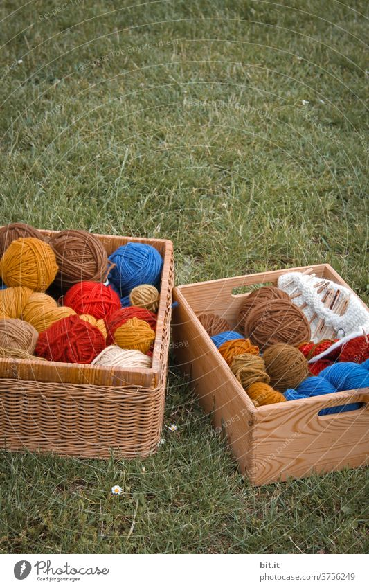 Fresh from the sheep Wool Ball of wool Wooly Wool scraps Knot Remainder remnants Handcrafts Knit Soft Leisure and hobbies Meadow Crochet Living or residing Lie