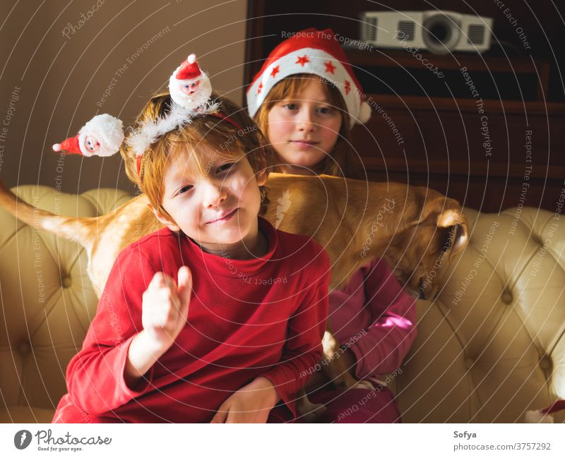 Kids in santa caps playing with cute puppy christmas authentic new year kids mood smiling santa claus red dog pet winter fun funny enjoy holidays home cozy