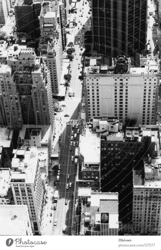 New York streets New York City USA Downtown Skyline Populated High-rise Architecture Transport Rush hour Street Car Tall Things Black & white photo