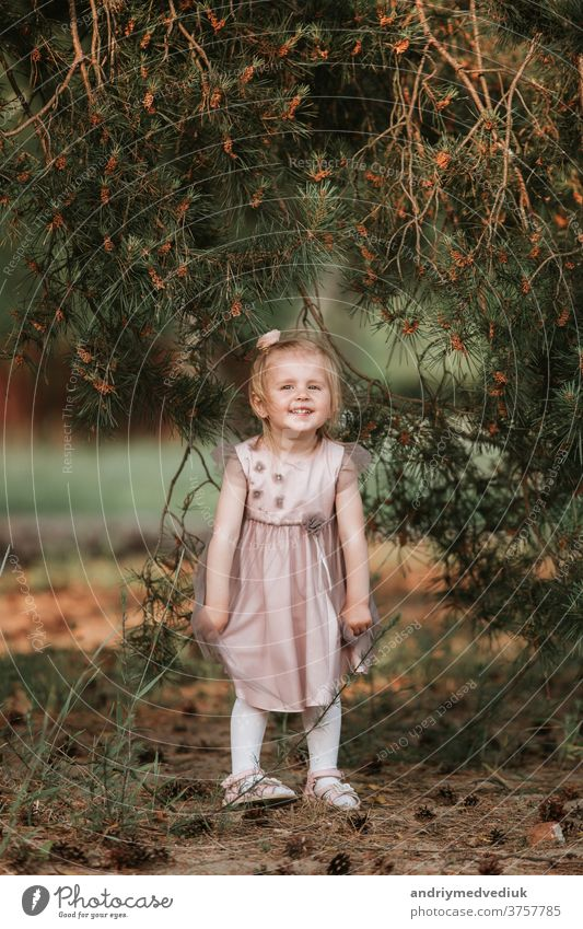 little cute girl have fun under tree with cones on a sunny spring day young kid happiness beautiful caucasian cheerful child childhood green happy lifestyle