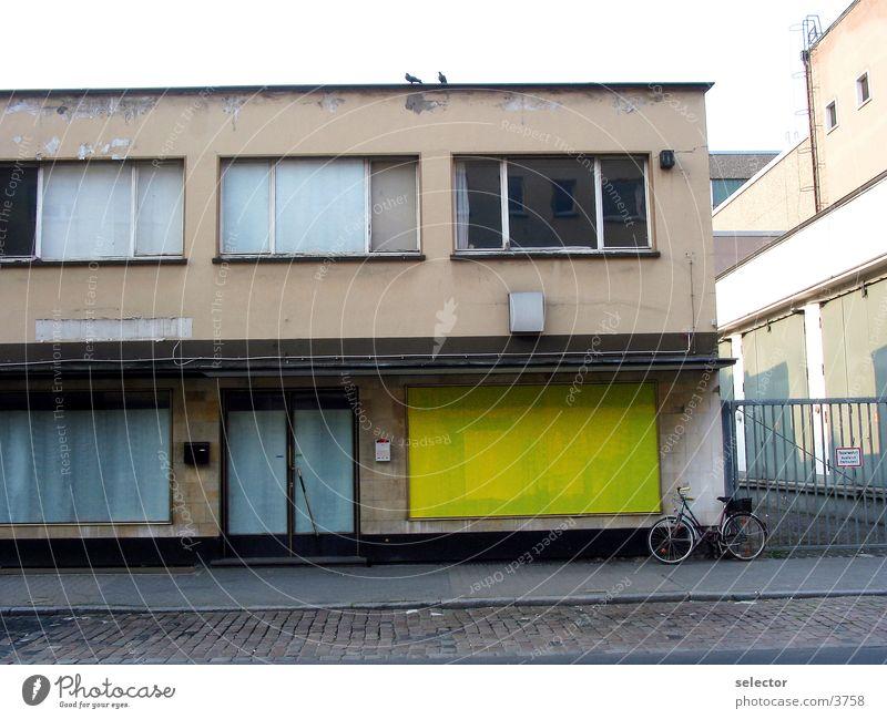 komm_lass_uns_fliegen Pigeon Yellow Shop window Frankfurt Architecture Gallery