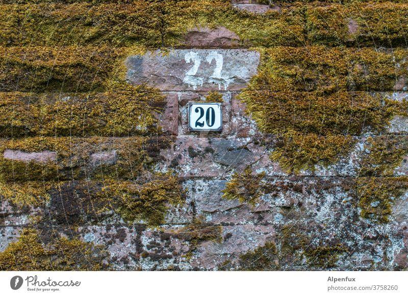CORRECTION House number Wall (building) Moss Digits and numbers Wall (barrier) Exterior shot Deserted Colour photo Facade Signs and labeling Copy Space bottom
