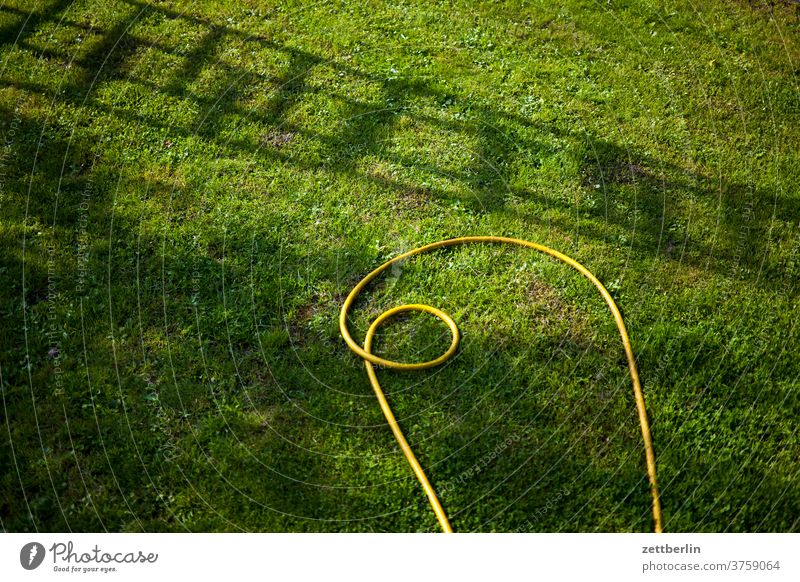 Garden hose and ladder shade Branch tree flowers blossom bleed Relaxation holidays Grass Sky allotment Garden allotments Deserted Nature Plant Lawn tranquillity