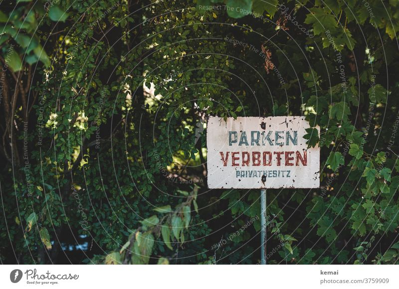 Parking Forbidden sign no parking interdiction Prohibition sign Private private property words Clue Old green shrubby