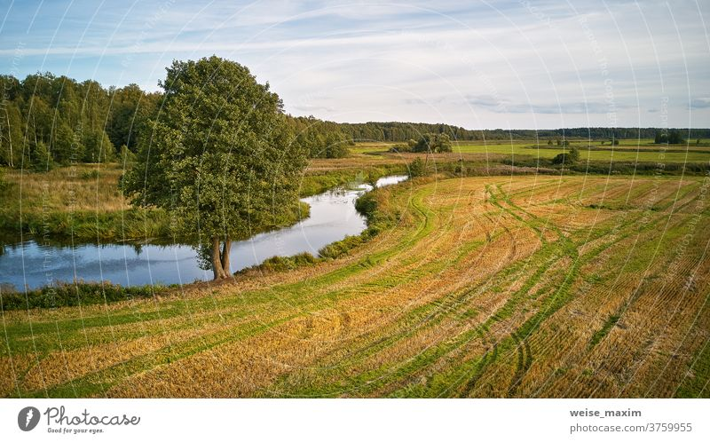 Summer background with alder tree on riverbank. Agriculture fields after harvest autumn fall sunny water September nature reflection blue aerial landscape