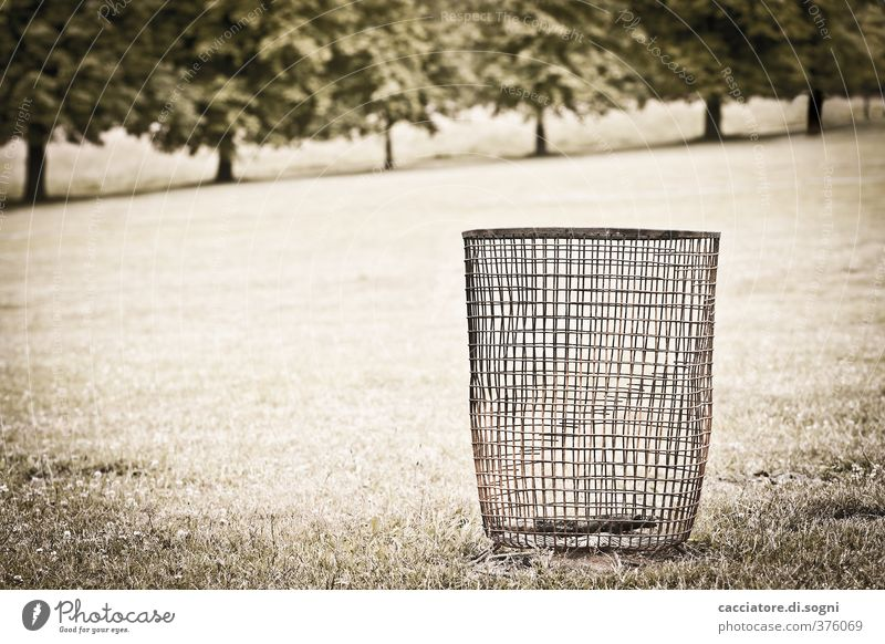 Standing alone Environment Landscape Summer Beautiful weather Tree Park Meadow Trash container Wastepaper basket Net Old Hideous Trashy Gloomy Town Orderliness