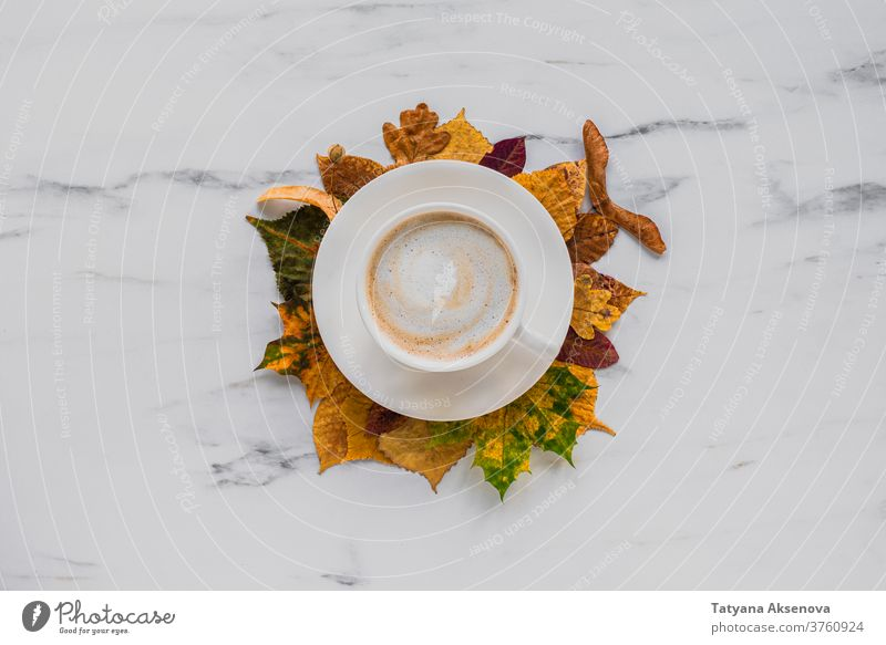 Cup of latte coffee with autumn leaves on marble fall leaf cappuccino cup maple yellow background orange season texture brown design plant thanksgiving bright