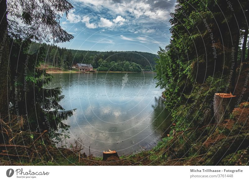 View of the lake Lütsche Dam Lake Water Forest Thueringer Wald Thuringia huts Sky Clouds Nature Landscape Deserted Rain Idyll Exterior shot Colour photo