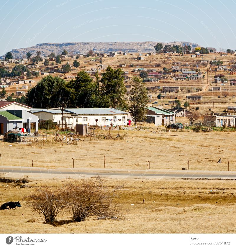 in south africa old town near the  mountain clarens field landscape trees sky autumn white scenery summer environment beautiful tranquil spectacular sunset