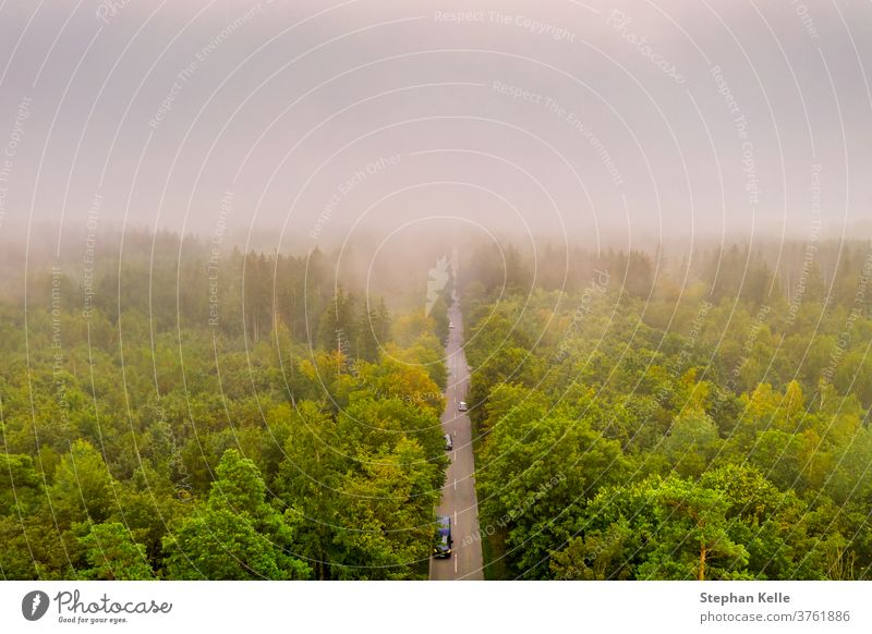 Aerial view at the car traffic on a road between a forest in foggy conditions, nice misty view from the birds eye. abstract tree summer nature landscape morning