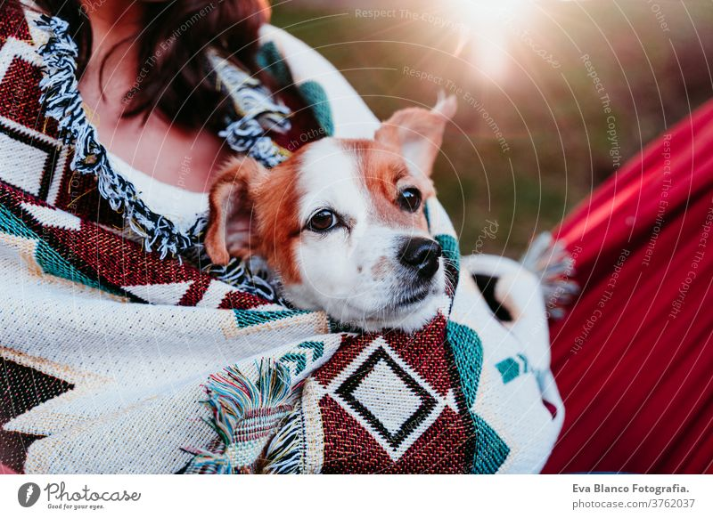 young woman relaxing with her dog in orange hammock. Covering with blanket. Camping outdoors. autumn season at sunset lying hammock jack russell pet nature park