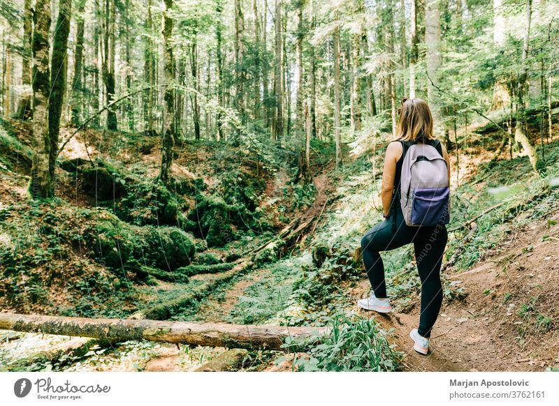 Young female nature explorer in the forest active adventure alone back backpack backpacker beautiful discovery europe foliage freedom girl green hike hiker