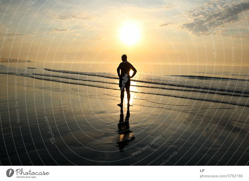 man standing on the seashore against the sun Man leadership guidance Direction Freedom Leisure and hobbies sunset beach sunset sky Sunset Reflection cool dreamy