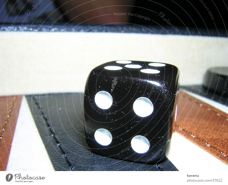 The die is cast 4 Backgammon Playing Leisure and hobbies Macro (Extreme close-up) play Dice