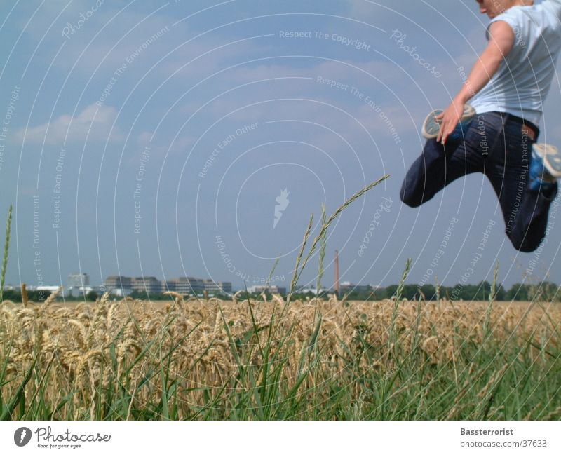 Man Summer Jump Flying Cornfield Blue sky