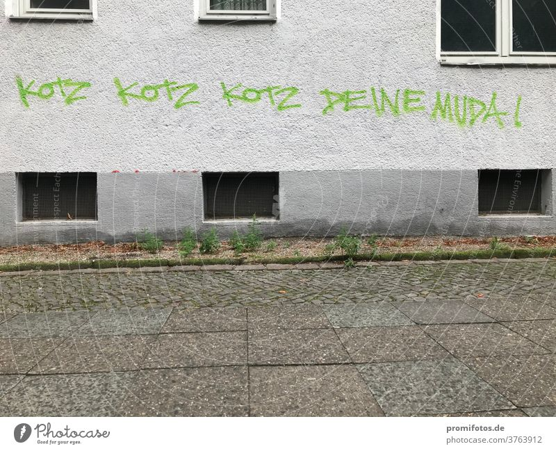 When you run out of arguments in the middle of an argument... Graffiti, seen in Berlin: Puke, Puke, Puke... your Mud(d)a. Photo: Alexander Hauk quarrel