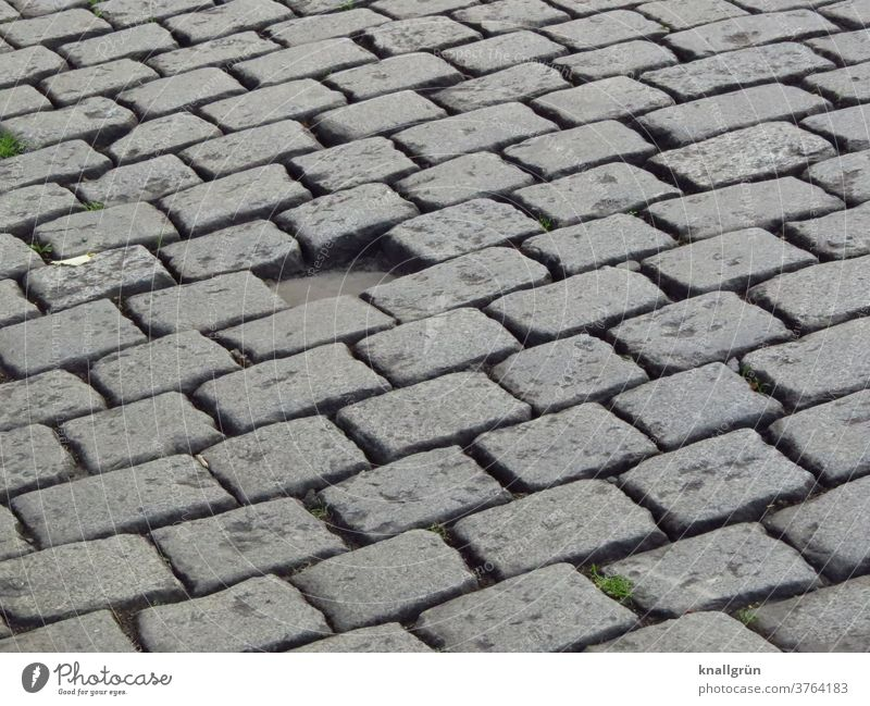 Cobblestones. One stone is missing. hatch Street Lanes & trails Paving stone Stone Deserted Exterior shot Traffic infrastructure Pavement Structures and shapes