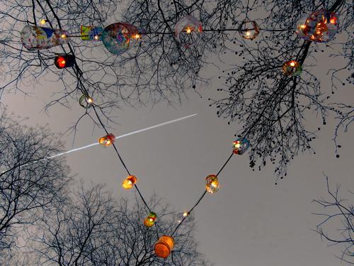 Light chain for seasonal decoration Light decoration Fairy lights Feasts & Celebrations Clear sky Evening Lamp bare trees Winter Christmas & Advent Illuminate
