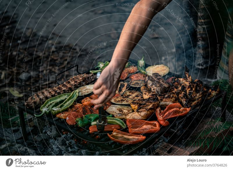 Grilled vegetables, chicken and pork in a rustic outdoor barbecue. colorful bio seasonal grocery Organic produce farming nutrition tomatoes freshness