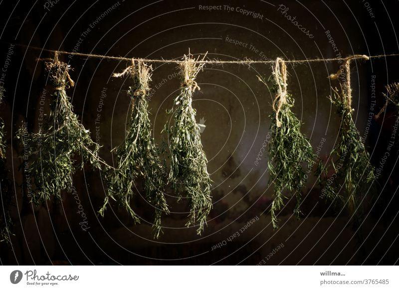 dried tarragon Tarragon Artemisia dracunculus kitchen herb kitchen herbs seasoning Medicinal herbs Dry Snakeweed Caesar salad Herba dracunculi Dragun Dried