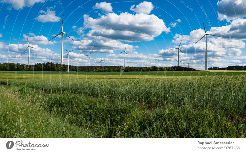 Future of wind energy integrated into nature electricity turbine renewable generator alternative generation landscape blue clouds day ecology environment