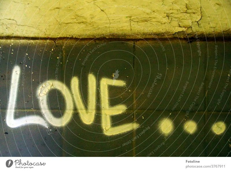 Love... - or the writing Love on a wall in a Lost Place Characters authored Letters (alphabet) points Point Decline lost places Colour photo Deserted Transience