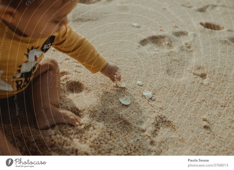 Toddler playing with sea shells Child childhood Beach Sand Sandy beach Shell Summer vacation Vacation & Travel Mussel shell Nature Exterior shot Ocean Close-up