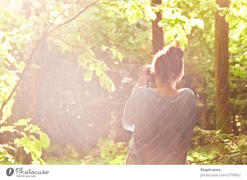 Human being Nature Youth (Young adults) Beautiful Plant Tree Calm Young woman Forest Life Feminine Happy Dream Exceptional Moody Idyll