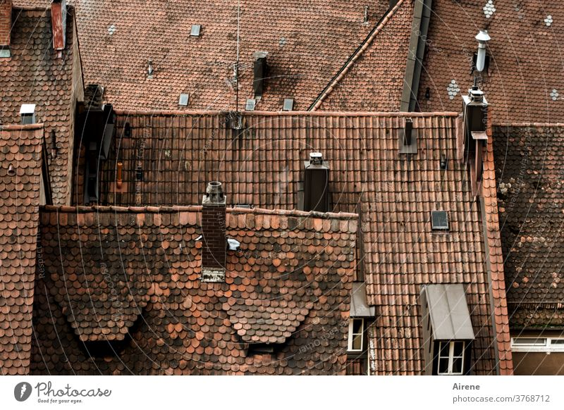 look down on the town Roof ridge Structures and shapes Skylight Red Bavaria Franconia Nuremberg first pediment Dormer Southern Germany Chimney Fireside Steep