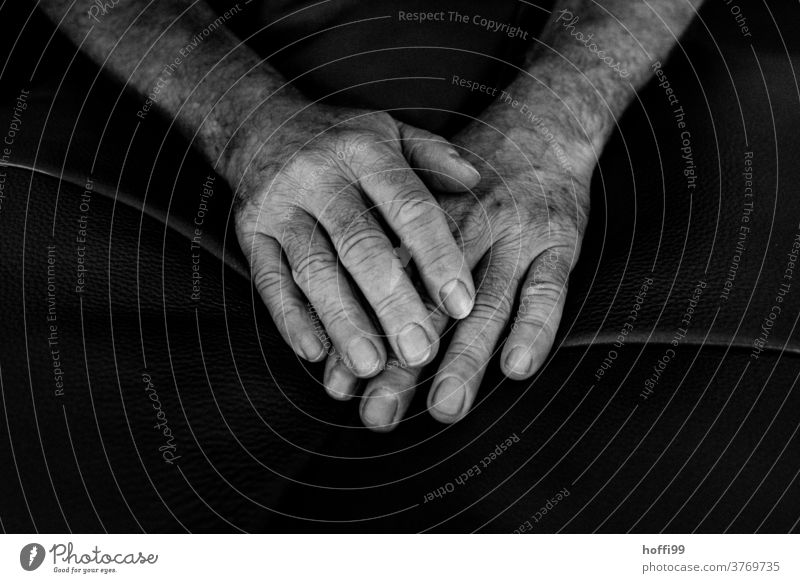 hands by hand person people Close-up sedentary Fingers wrinkled Old Man Skin more adult portrait Manly age