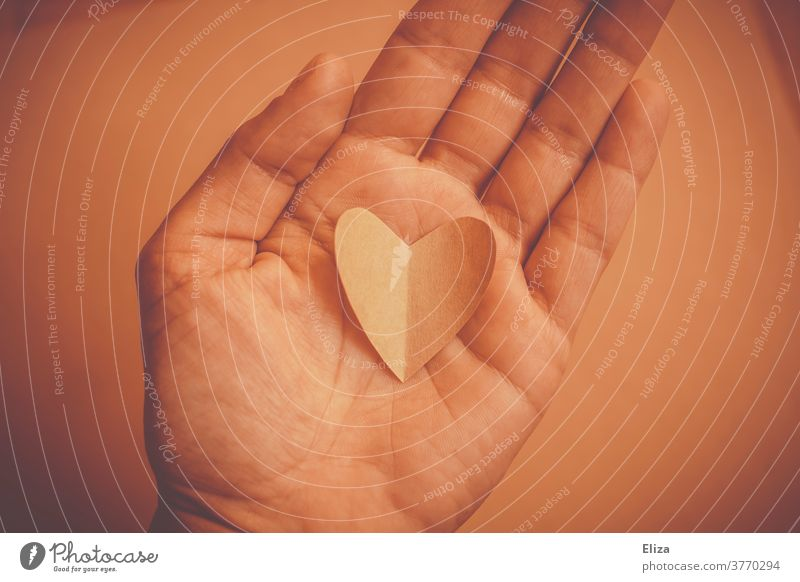 Heart in hand. Tone on tone. by hand Love affectionately tone-in-tone give love sensation Emotions Romance Give Gift romantic valuable stop Wary Valentine's Day