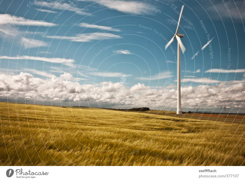 Wind turbine in cereal field Grain Energy industry Renewable energy Wind energy plant Sky Clouds Horizon Sun Summer Beautiful weather Field Rotate Friendliness