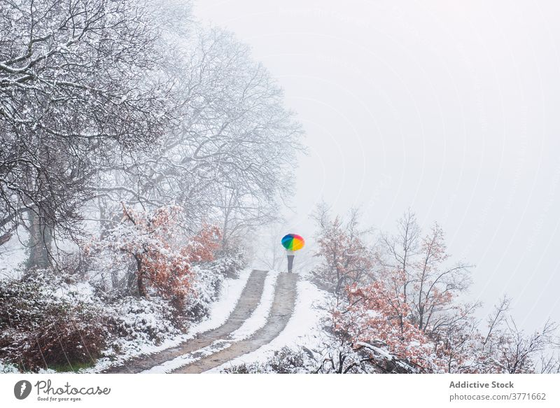 Unrecognizable person walking along road in winter park colorful umbrella snow snowfall cold season pyrenees catalonia spain weather frost holiday vacation
