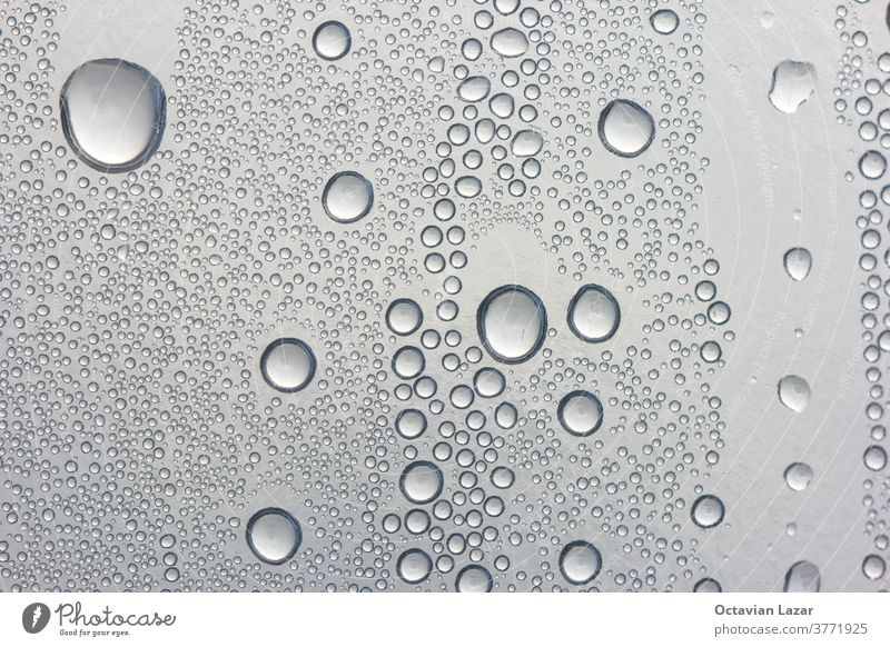 Water droplet condensation n mate plastic bottle back lit macro wallpaper wash rain clean water drops droplets dew isolated pure raindrop zen bubbles grey