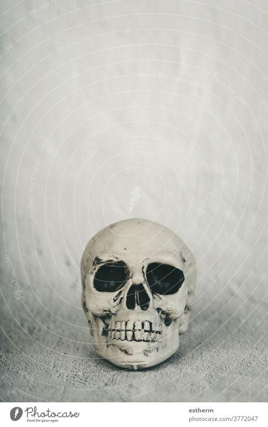 halloween concept background skull halloween pumpkin witchcraft trick or treat party gothic skeleton magic ghost design spider bat black holidays october