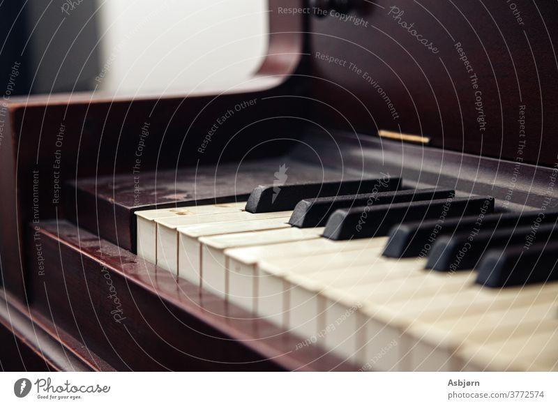 Piano Keys Dusty Beautiful craft Engineering inside strings fumble Art Musical instrument sound generation Sound Harmonious Playing Wood piano grand