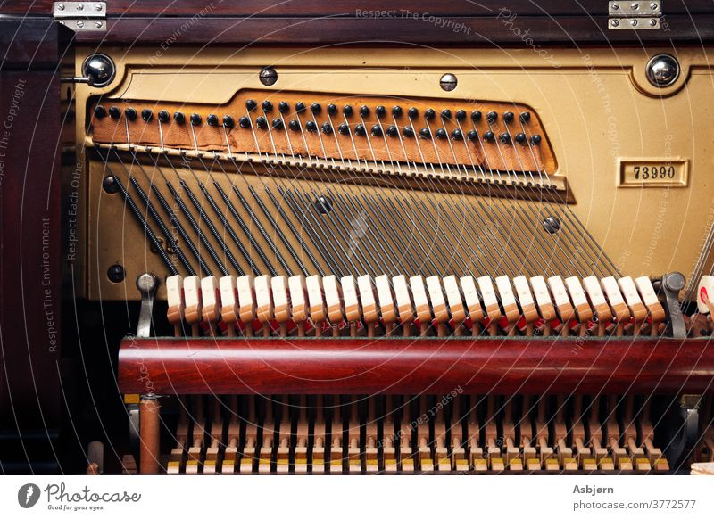 Inside of piano Make music Music Keyboard Piano Piano keyboard Concert Classical Colour photo Interior shot Musician Play piano Leisure and hobbies Close-up