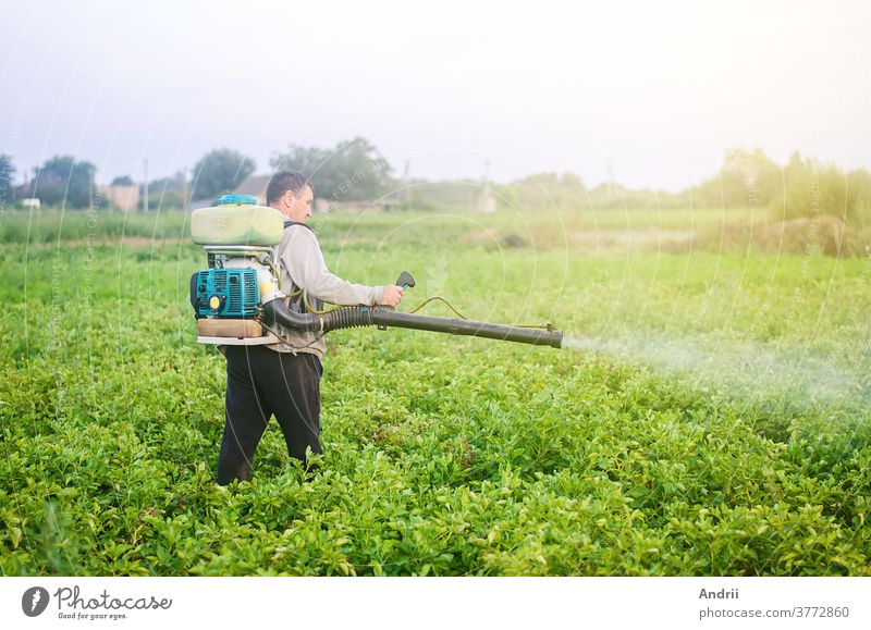 A farmer with a mist sprayer blower processes the potato plantation from pests and fungus infection. Use of agriculture industrial chemicals to protect crops. Protection and care. Fumigator fogger.