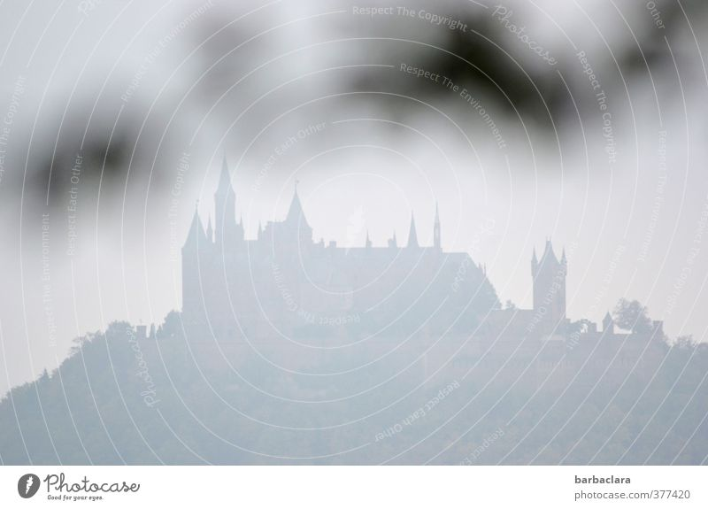 ghostly Medieval times Autumn Fog Leaf Twig Castle Stand Old Fantastic Far-off places Large Bright Gray Moody Protection Culture Nostalgia Tradition Environment