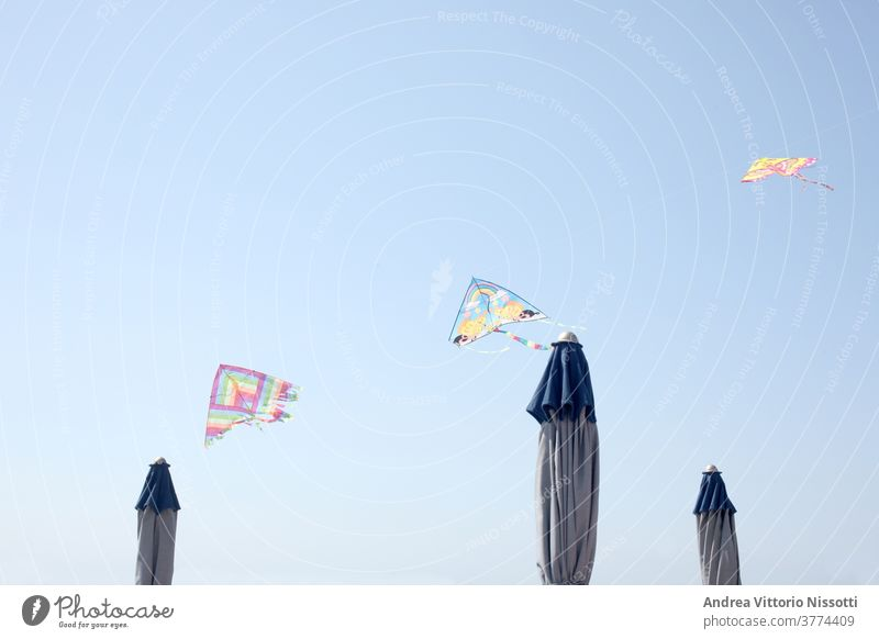 row of toy kites flying over closed  sun umbrellas with copy space blu sky summer sea beach childhood fun game play leisure print color image horizontal shore